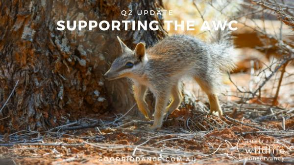 Our Q2 donation to the Australian Wildlife Conservancy